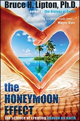 The Honeymoon Effect by Bruce H. Lipton Ph.D.