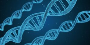 Heal cancer with Epigenetics